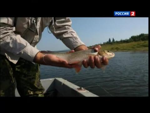 диалоги о рыбалке енисей часть 1