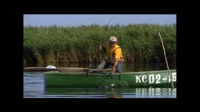 диалоги о рыбалке телепередача