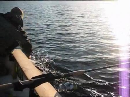 охота и рыбалка в швеции видео