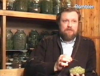 54.Пастушья.сумка - Целебные растения и их применение.