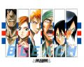 Bleach_-_072_of_XXX_[RUS_JAP]_[WMV_640x480]_[Anna]
